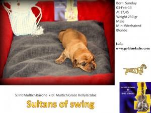 sultans jpg